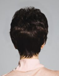 Perception Wig Natural Image - image Ellen-Willie-ROP-Gia-190x243 on https://purewigs.com