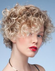 Cheryl Wig, Dimples Rose Collection - image Ellen-Willie-Perucci-Switch-Wig-190x243 on https://purewigs.com