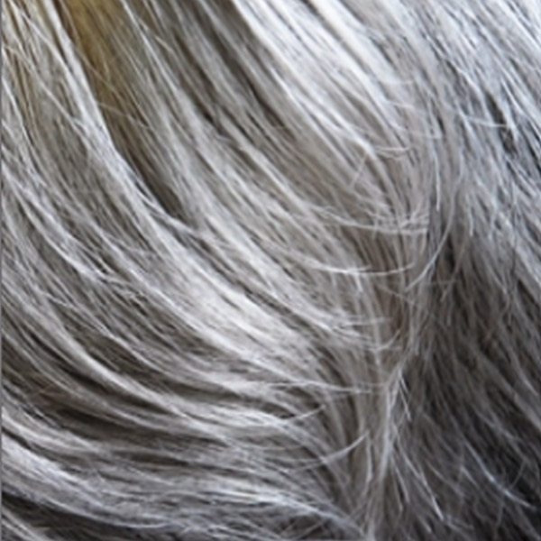 Clipion Mono Hair Enhancer, Dimples Rose Collection - image Silver-thread-56 on https://purewigs.com