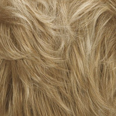 Kim Wig Natural Image - image SF613_14-Golden-Lights on https://purewigs.com